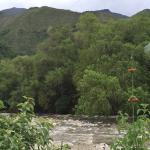 blog river 2